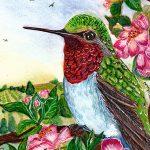 Le drame du colibri